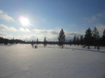 El intenso resplandor del Círculo Polar Ártico