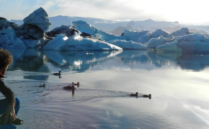 Jokursalon, Islandia