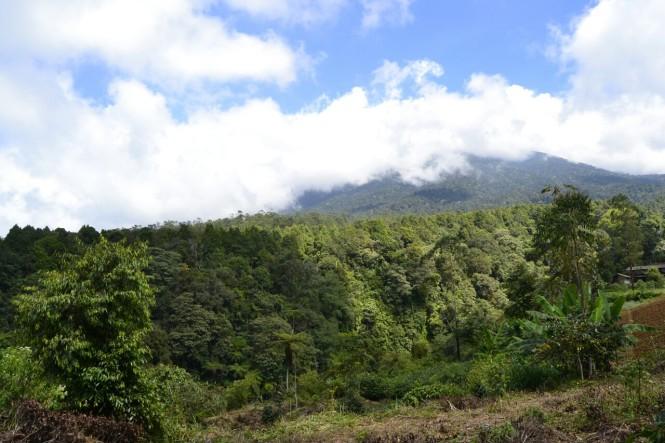 2016-07-gunung-gede-volcan