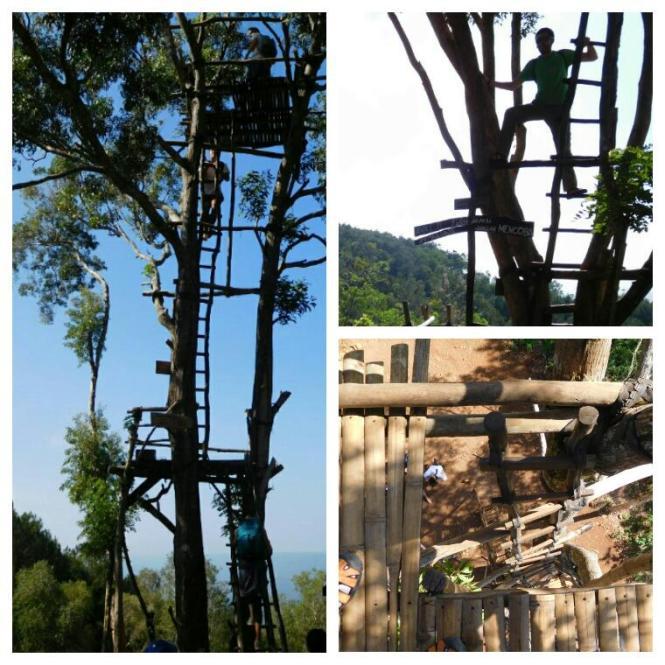 2016-07-hutan-pinus-mangunan-02