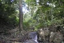 Parque Nacional Bali Barat