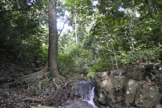 2016-07-parque-natural-bali-barat
