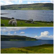 Isle of Skye - Carbost