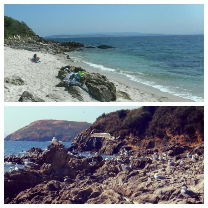 2016-07-Ons-Praia-Pereiro.jpg