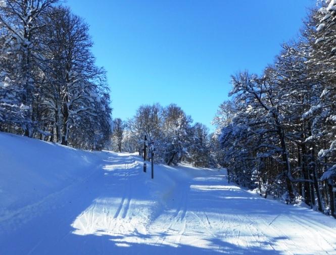2016-12-Esqui-de-Fondo-Abodi-Cerrillar-Cruz-Osaba.JPG