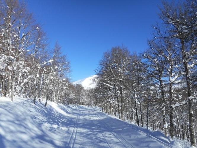 2016-12-Esqui-de-Fondo-Abodi-Cruz-De-Osaba-4.JPG