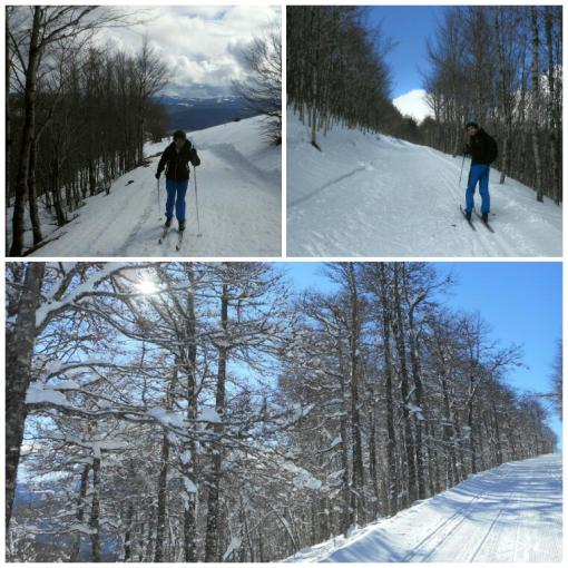 2016-12-Esqui-de-Fondo-Abodi-Cruz-De-Osaba-6.jpg