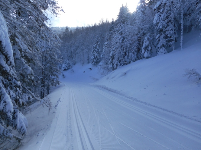 2016-12-Esqui-de-Fondo-Abodi-Zamukadoia-2.JPG