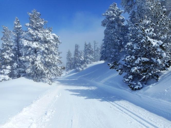 2016-12-esqui-de-fondo-el-ferial-zampori-pista-2-5.JPG