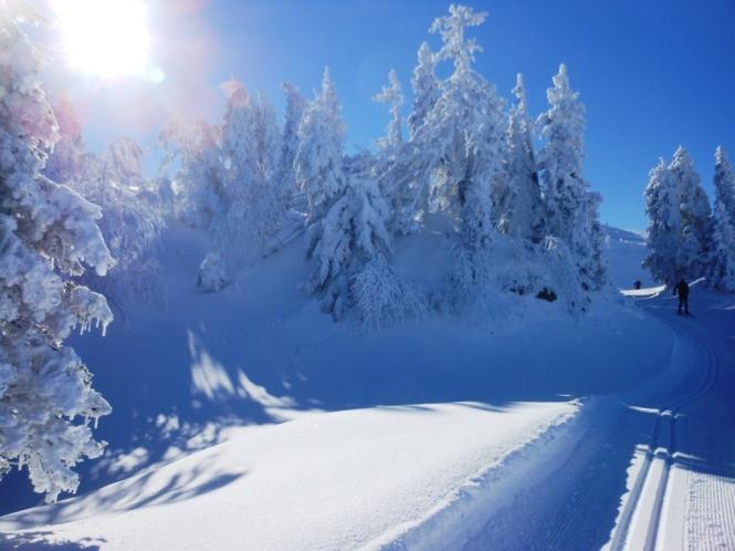 2016-12-esqui-de-fondo-el-ferial-zampori-pista-3-2.JPG