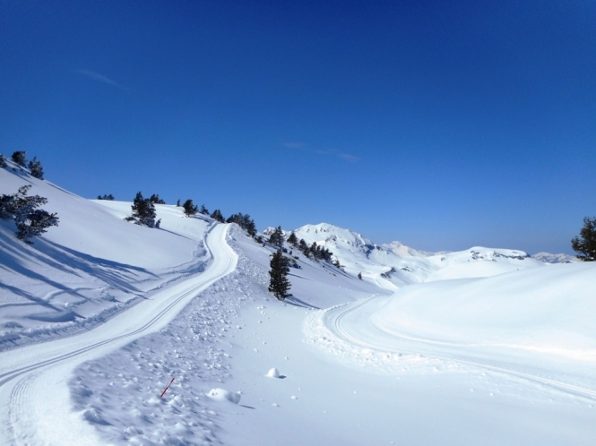 2016-12-esqui-de-fondo-el-ferial-zampori-pista-4-8.JPG