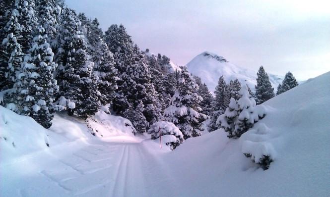 2016-12-esqui-de-fondo-la-contienda-pista-1-5.jpg