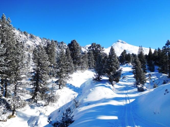 2016-12-esqui-de-fondo-la-contienda-pista-3-5.JPG