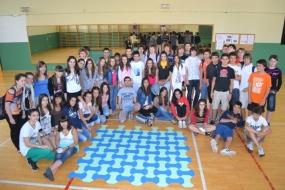 Hueso Nazarí - Curso 2011-2012 - IES Navarro Villoslada