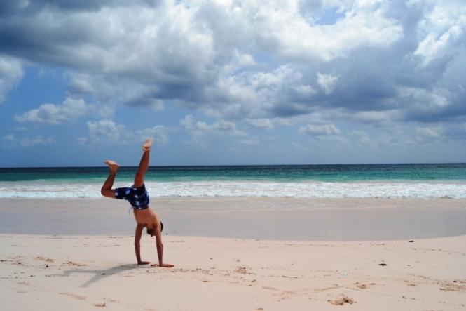 2012-04-bahamas-eleuthera-harbour-island-pink-sand-beach-4