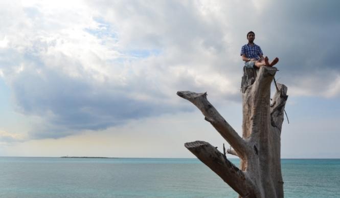 2012-04-bahamas-new-providence-clifton-heritage-park-arbol-1