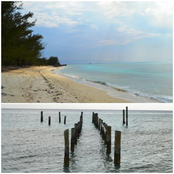 2012-04-bahamas-new-providence-clifton-heritage-park-flipper-beach.jpg