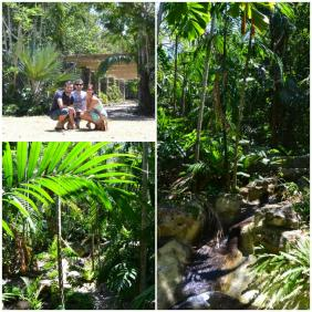 New Providence - Retreat Gardens National Park