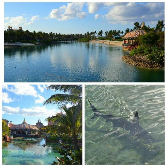 2012-04-bahamas-paradise-island-acuario-exterior.jpg