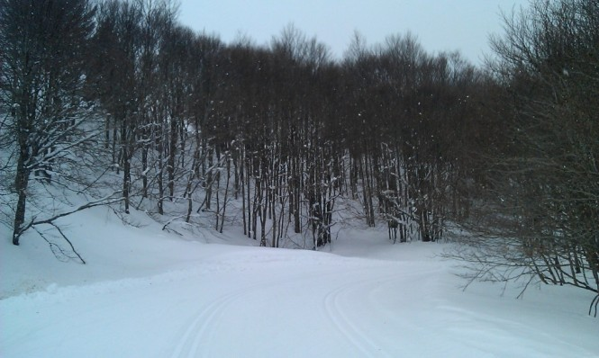 2017-01-esqui-de-fondo-le-somport-pista-3-1.jpg