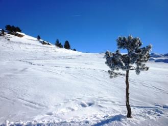 2017-01-esqui-de-fondo-le-somport-pista-7-3