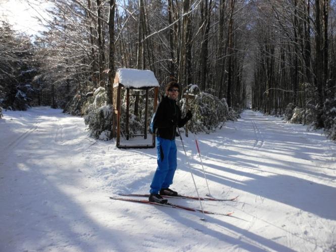 2017-01-esqui-de-fondo-mata-de-haya-bosque-2.JPG