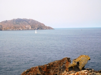 Roca Guepardo