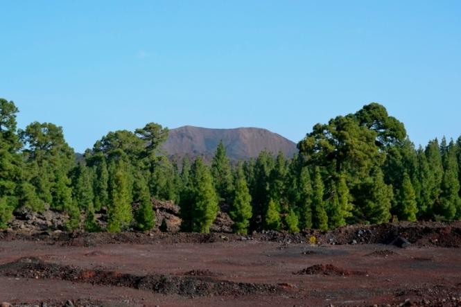 2016-12-tenerife-volcan-chinyero-1.JPG