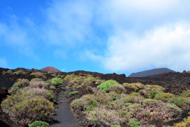 2017-01-la-palma-volcanes-gr-131-18-hacia-faro-fuencaliente-vistas-san-antonio-teneguia