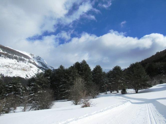 2019-02-esqui-de-fondo-mata-de-haya-la-dronda-6