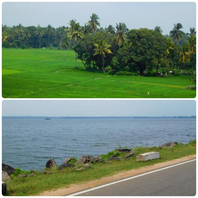 2017-02-sri-lanka-polonnaruwa-lago.jpg