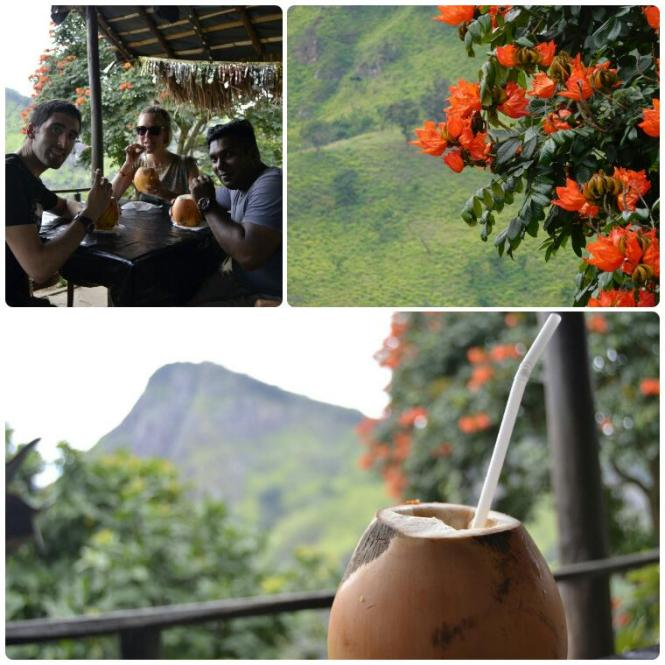 2017-02-sri-lanka-ella-little-adams-peak-zumos.jpg