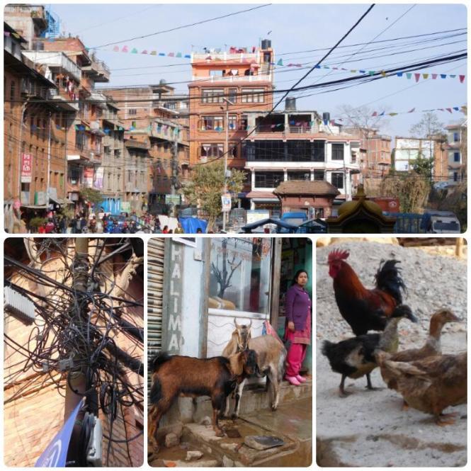 2017-03-nepal-dhulikhel-1