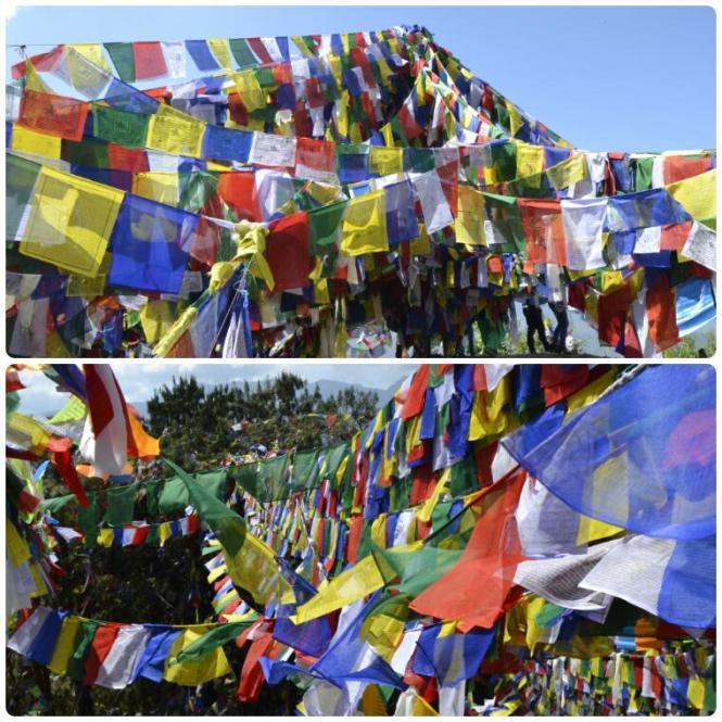 2017-03-nepal-dhulikhel-ruta-namobuddha-13-thrangu-tashi-tangtse