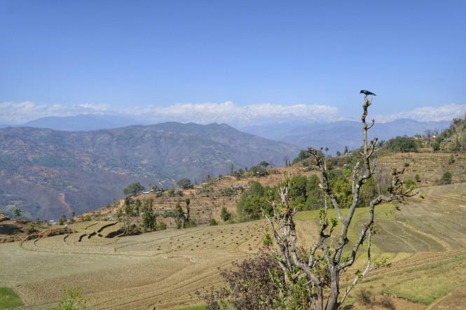 2017-03-nepal-saping-1.jpeg