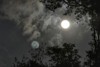 Saping - Noche Despejada
