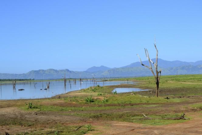 2017-03-sri-lanka-udawalawe-safari-21-laguna.JPG