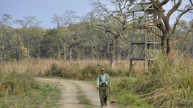 2017-03-nepal-Chitwan-jungle-walk-dia-1-08-torre-observacion.jpeg