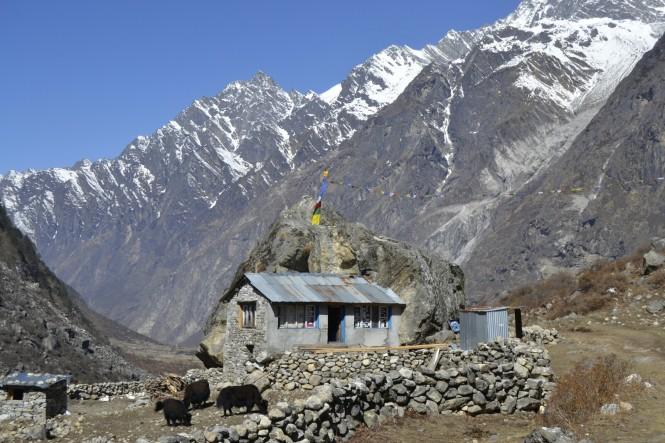 2017-03-nepal-Trekking-LGH-Dia-3-03-hacia-kyanjin