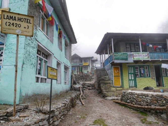 2017-03-nepal-Trekking-LGH-Dia-5-de-kyanjin-a-lama-6-lama-hotel.jpeg
