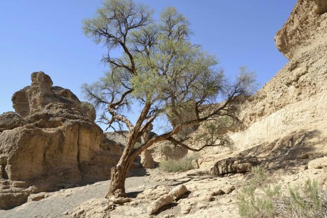 2017-06-namibia-sesriem-canyon-3
