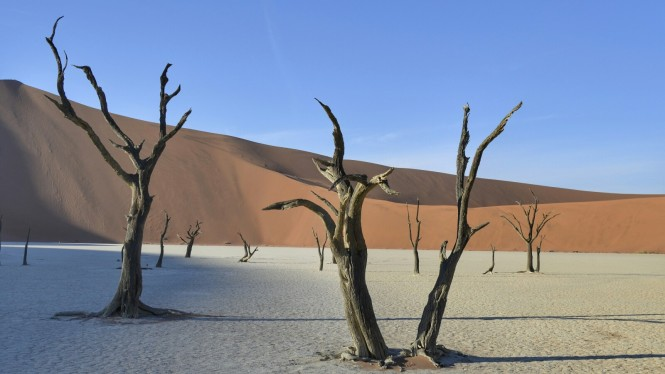 2017-06-namibia-sesriem-deadvlei-20