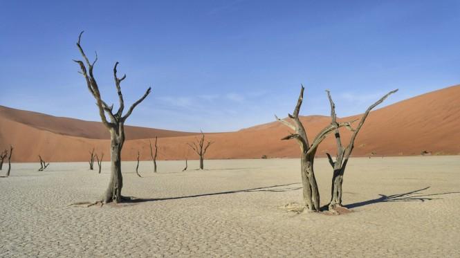 2017-06-namibia-sesriem-deadvlei-24.jpeg