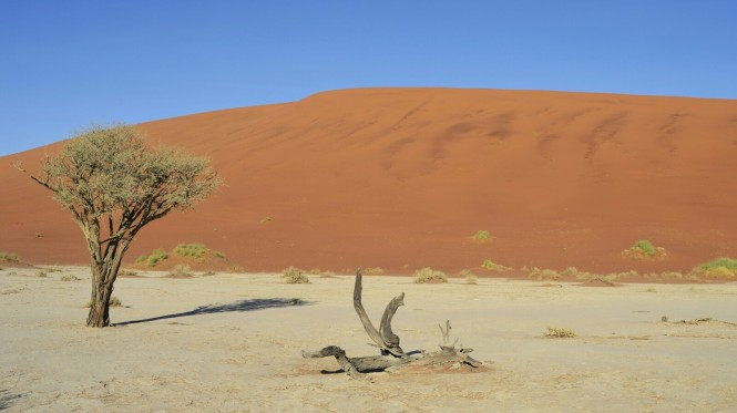 2017-06-namibia-sesriem-deadvlei-33
