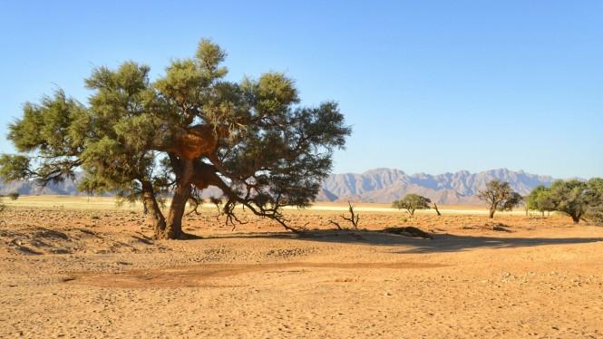 2017-06-namibia-sesriem-sossusvlei-lodge-3.jpeg