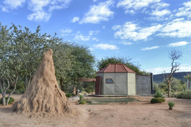 2017-06-namibia-carretera-d2512-a-grootfontein-termitero