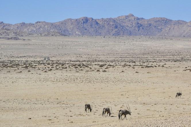 2017-06-namibia-garub-1.jpeg