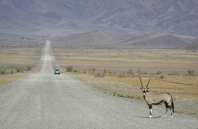 2017-06-namibia-luderitz-camino-desde-sesriem-8-oryx