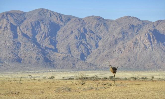 2017-06-namibia-luderitz-camino-desde-sesriem-9.jpeg