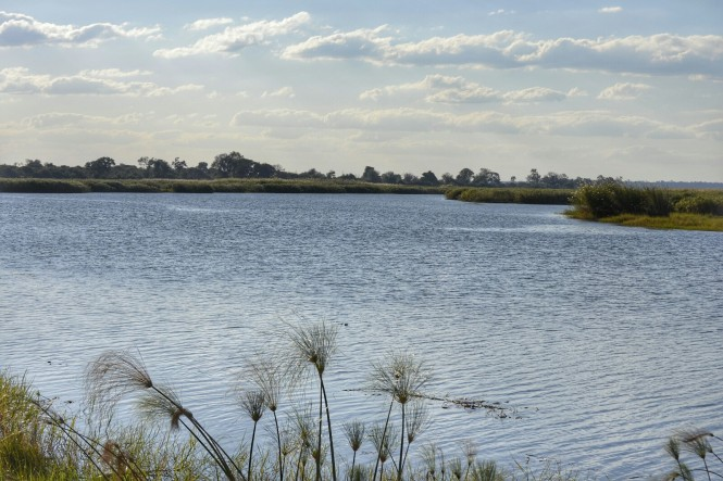 2017-06-namibia-safari-mahango-17-laguna.jpeg